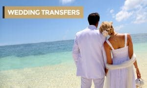 WEDDING TRANSFERS with heading